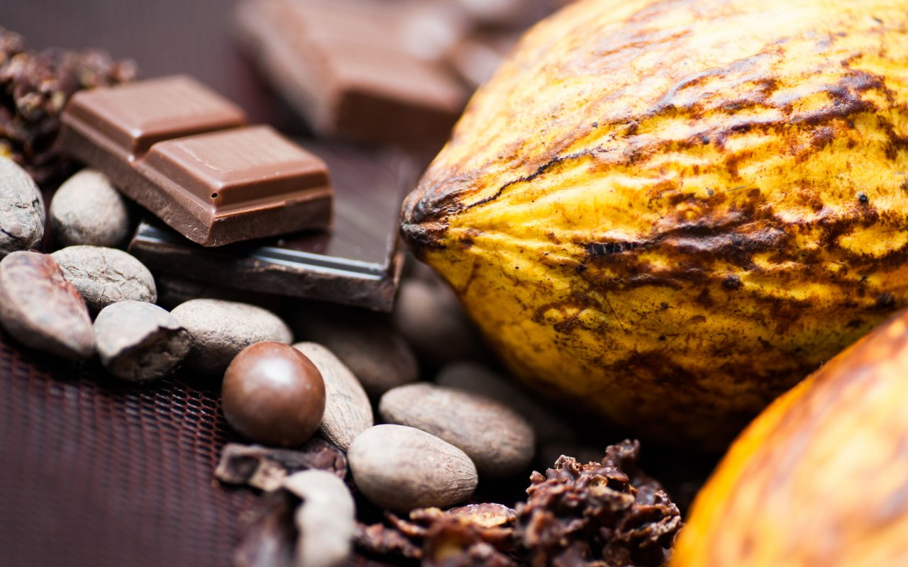 Cacao du Mexique