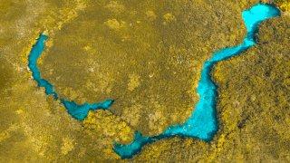 5 Cenotes à découvrir dans le Yucatan